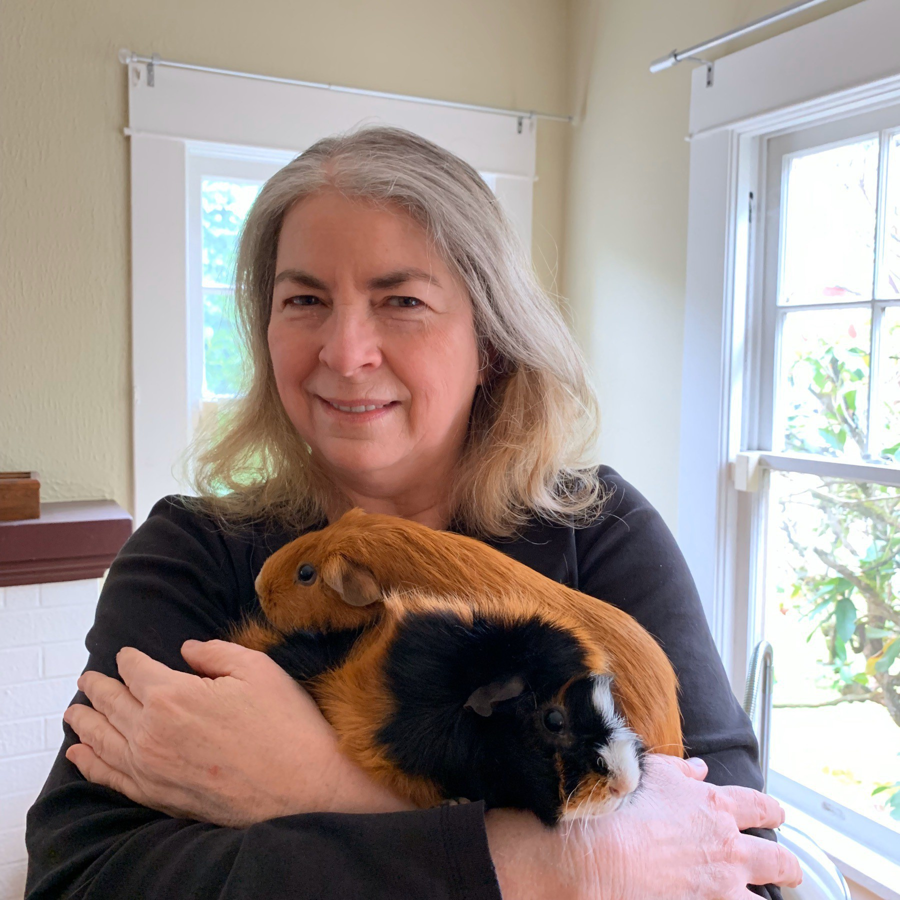 Jean and guinea pigs