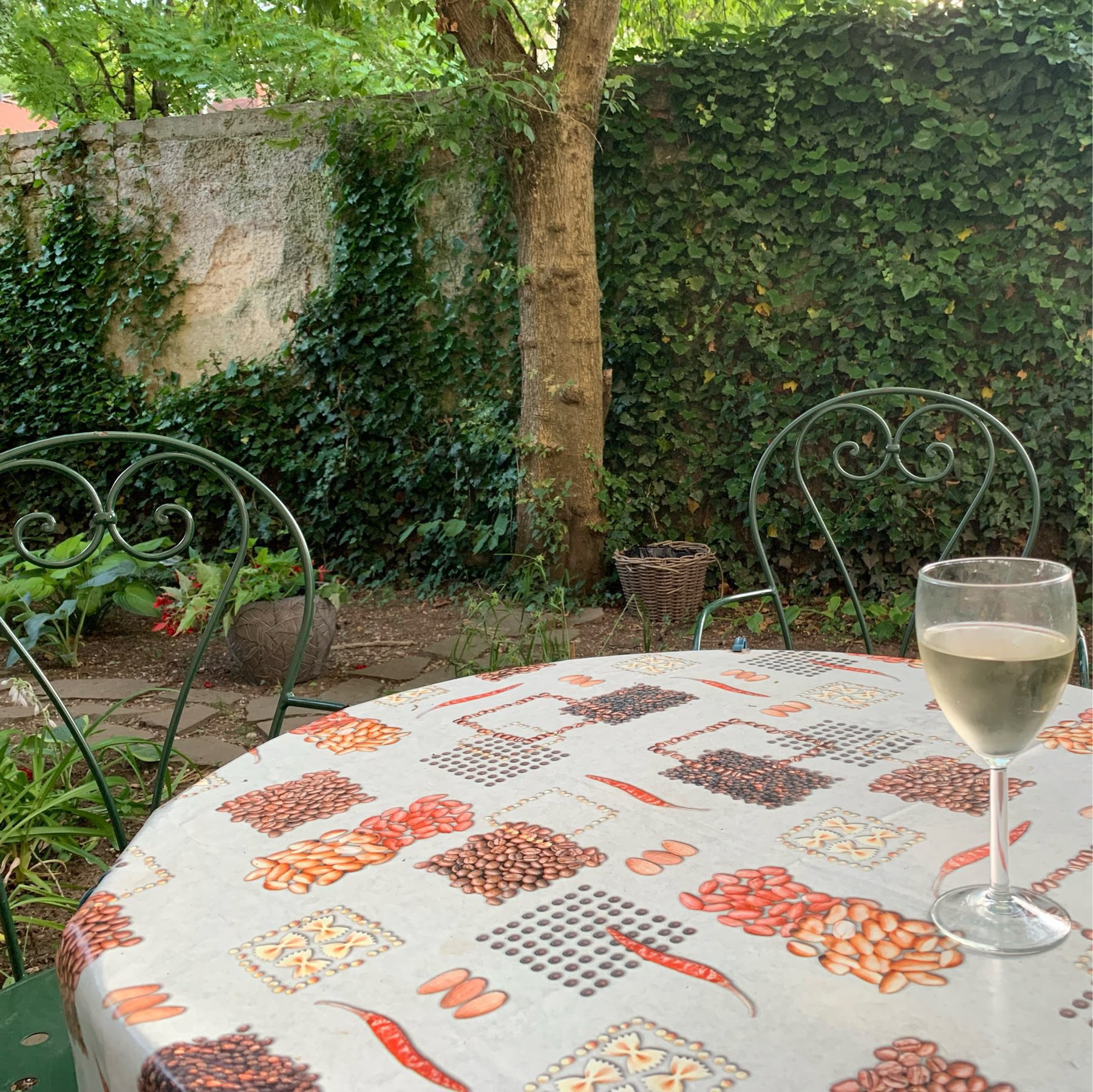 backyard with table and glass of wine