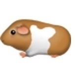 proposed guinea pig emoji