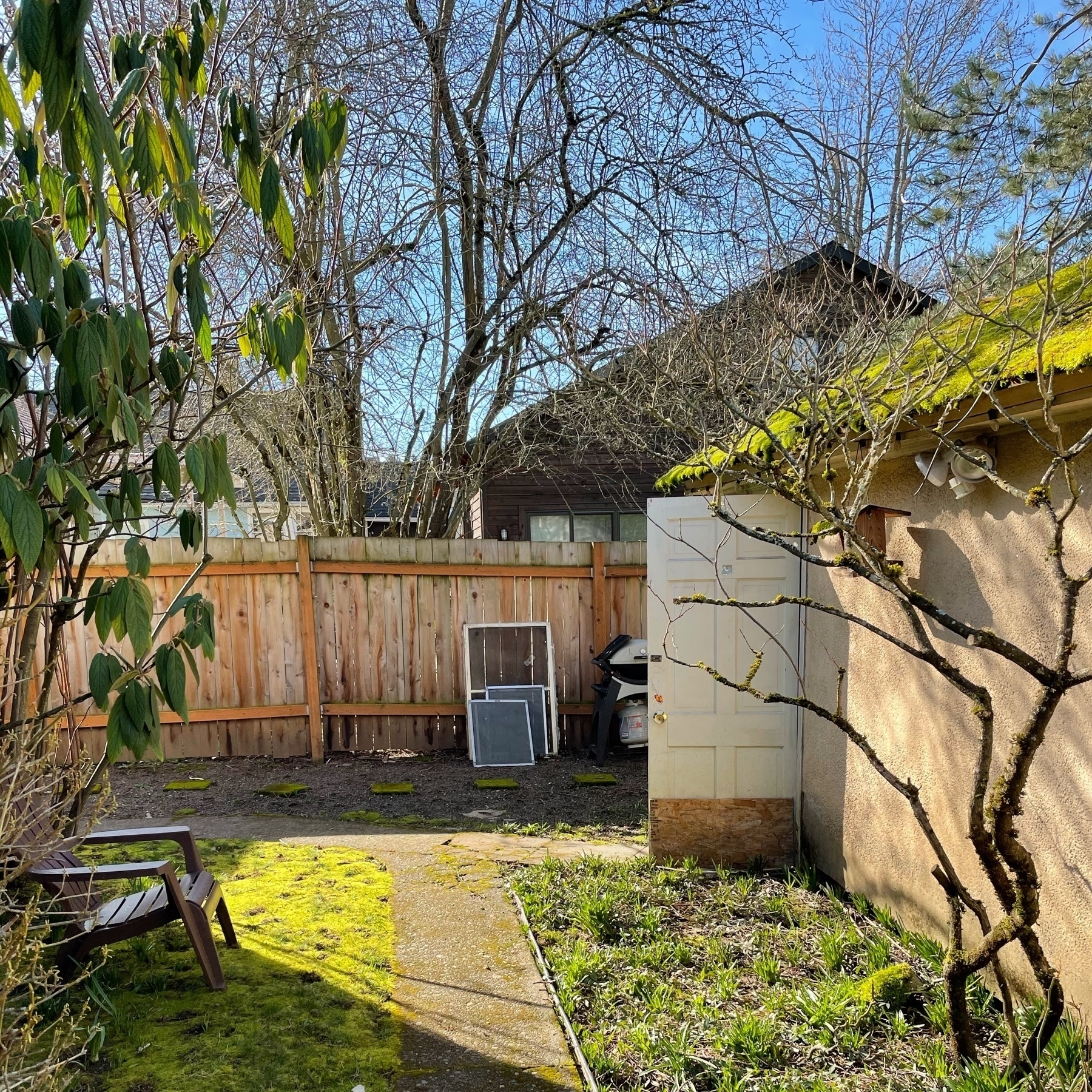 Backyard fence and garage on a sunny day